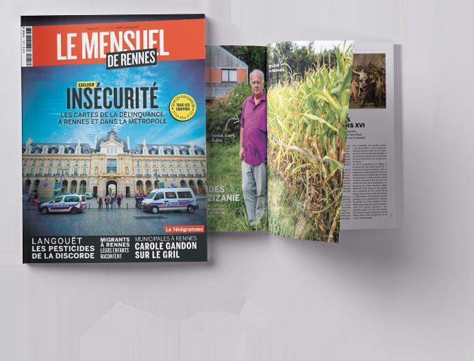 Insécurité : les cartes de la délinquance à Rennes et dans la métropole